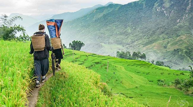 Sapa Trekking 2 Days 1 Night Overnight Hotel
